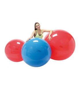 Balon de ejercicios Gymnic